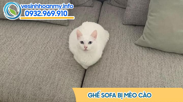 Ghế sofa bị mèo cào